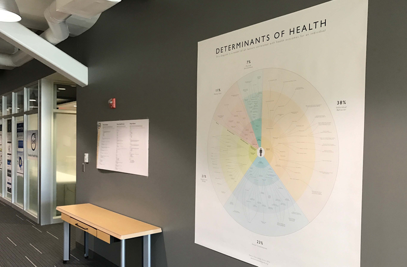 Determinants Of Health Visualized